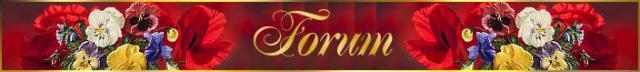 roosviool+forum.jpg
